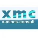 conférence iconomie X Mines consult